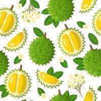 padrão sem emenda de desenho vetorial com frutas exóticas durio ou durian, flores e folhas em fundo branco vetor