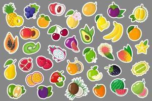 conjunto de adesivos de ilustrações de desenho vetorial com frutas exóticas de verão e bagas. vetor