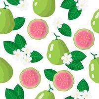 padrão sem emenda de desenho vetorial com psidium ou goiaba frutas exóticas, flores e folhas em fundo branco vetor