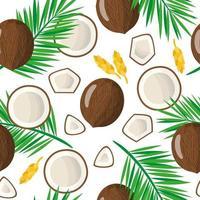 padrão sem emenda de desenho vetorial com cocos nucifera ou coco, frutas exóticas, flores e folhas em fundo branco vetor