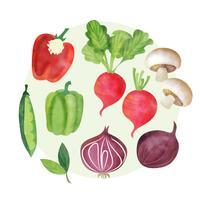 Vector Aquarela conjunto de legumes