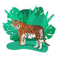 tigre parado entre grossas folhas de palmeira vetor