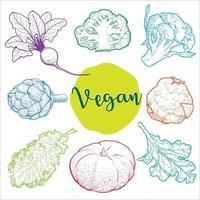 mão ilustrações desenhadas com vegetais orgânicos usados em cores brilhantes vetor