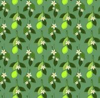 fundo de hortelã sem costura com ramos de limão fresco vetor