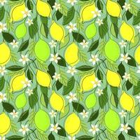 fundo de hortelã sem costura com ramos de limão vetor