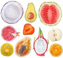 conjunto aquarela de frutas maduras frescas e frutas exóticas fecham objetos de sinal isolados no fundo branco vetor