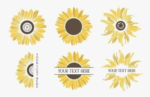 conjunto de girassóis de cor. borda da flor. vetor
