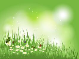 Borboletas na grama com margaridas vetor