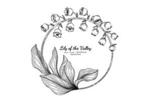 flor e folha de lírio do vale mão desenhada ilustração botânica com arte de linha. vetor