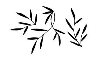 silhuetas de galhos com folhas vetor