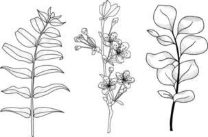 conjunto de flores pretas e brancas vetor
