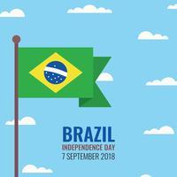 Bandeira brasileira vetor