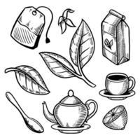 conjunto de folhas de xícara de chá doodle ilustração retrô vetor