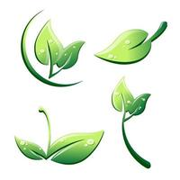 folhas em estilo cartoon com gotas isoladas em um fundo branco vetor