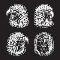 coleção cabeça de águia em preto vetor
