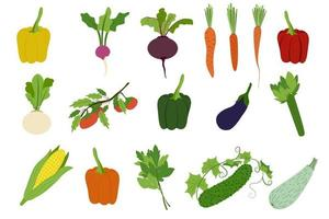 vegetais conjunto simples pimentão rabanete beterraba cenoura nabo tomate berinjela aipo milho alface pepino vetor