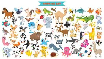 coleção de animais engraçados dos desenhos animados vetor