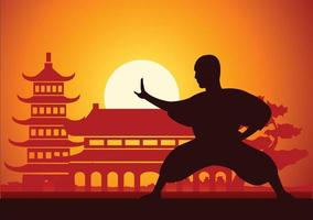 esporte famoso de arte marcial kung fu de boxe chinês vetor