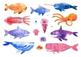 criaturas marinhas em estilo aquarela vetor