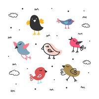 Vetor de coleção de aves