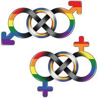 símbolo lgbt unido pelo infinito vetor