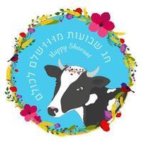 conceito de shavuot de feriado judaico com culturas de quadro de flores e texto de vaca em shavuot perfeito em hebraico para todos vetor