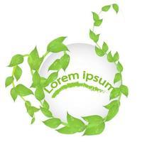 moldura redonda de ramos com folhas verdes frescas isoladas no espaço de cópia de fundo branco vetor