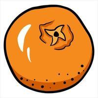 estilo cartoon de tangerina frutas cítricas vitamina c vetor