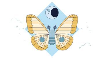 vetor de noite de mariposa