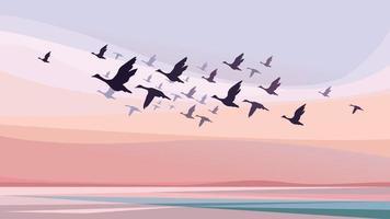 aves migratórias ao pôr do sol vetor