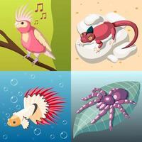 ilustração em vetor conceito design 2x2 animais de estimação exóticos