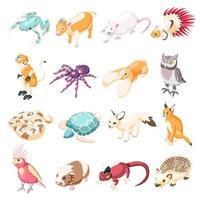 ilustração vetorial de ícones isométricos de animais de estimação exóticos vetor