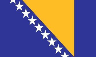 ilustração vetorial da bandeira da bósnia e herzegovina vetor