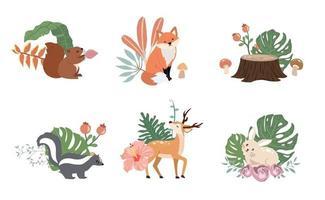 coleção de objetos bonitos da floresta com animais vetor