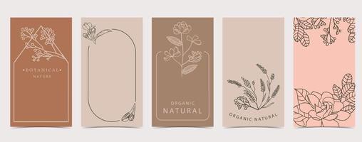 fundo fofo para redes sociais com magnólia, flor de lavanda vetor
