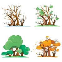 floresta em diferentes épocas do ano vetor