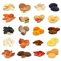 Ilustração em vetor conjunto realista de frutas secas