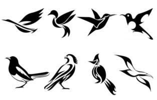 conjunto de imagens vetoriais de vários pássaros, como garça-colibri pega, falcão, gaivota e torneira bulbul, bom uso para símbolo mascote ícone avatar e logotipo vetor