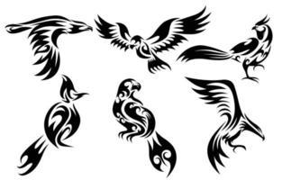 conjunto de seis imagens vetoriais de vários pássaros, como águia, falcão, faisão e torneira, bulbul, bom uso para símbolo mascote ícone avatar e logotipo vetor