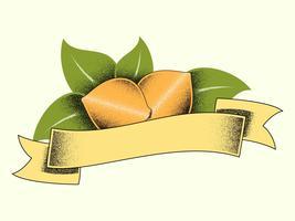 Vetores de ilustrações de citros Vintage exclusivo
