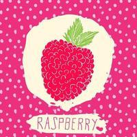 framboesa desenhada à mão frutas esboçadas com folha no fundo com padrão de pontos doodle vetor framboesa para logotipo rótulo identidade