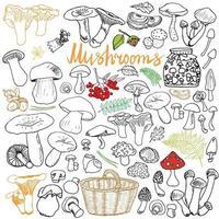 cogumelos esboço rabiscos desenhados à mão definir diferentes tipos de ícones vetoriais de cogumelos comestíveis e não comestíveis no fundo branco vetor