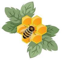 imagem vetorial de um favo de mel como o conceito de uma flor sendo uma planta de mel vetor