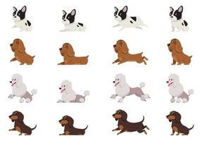 bulldog francês cocker spaniel poodle e bassê em diferentes poses vetor