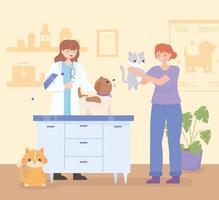 animais médico veterinário vetor