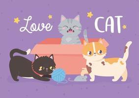amo gatos animais de estimação brincando com caixa e bola de lã vetor
