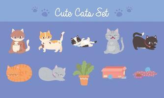gatos fofos com um felino diferente com alimentos e plantas de brinquedos vetor