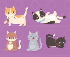 animais de estimação fofos gatos animais domésticos em fundo roxo vetor