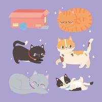 gatos animal doméstico felino com bola de lã de caixa vetor