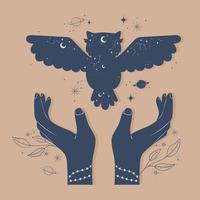 astrologia de mãos de coruja vetor